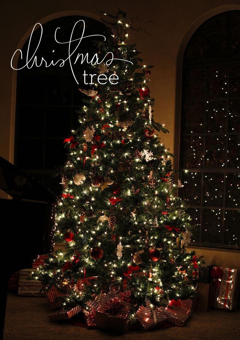 December 13L